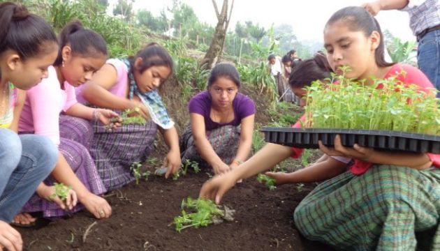 Formación profesional y desarrollo local Guatemala
